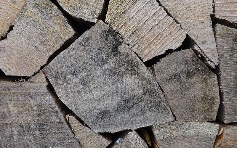 Zum Befeuern von Kaminen eignet sich trockenes Scheitholz am besten.